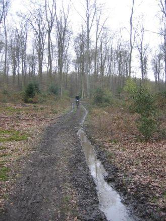 2008 Caudebecaise