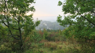 2016-10-09-vernonaise-12