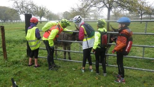 2017-11-11 ecole cyclo (1)